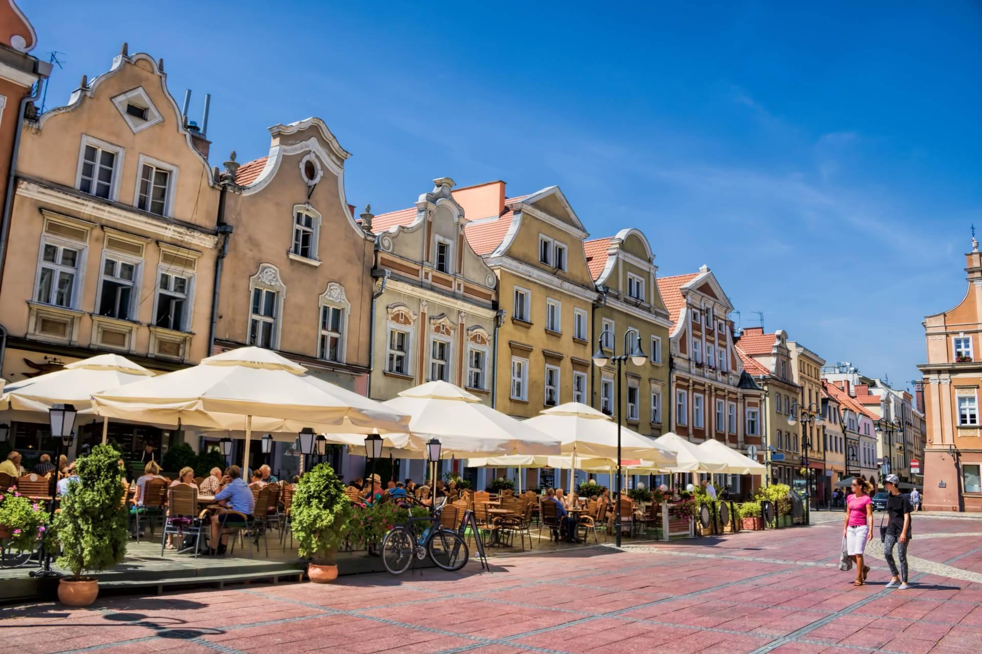 🎯 Pozycjonowanie stron internetowych Opole | Agencja SEO | Grupa TENSE