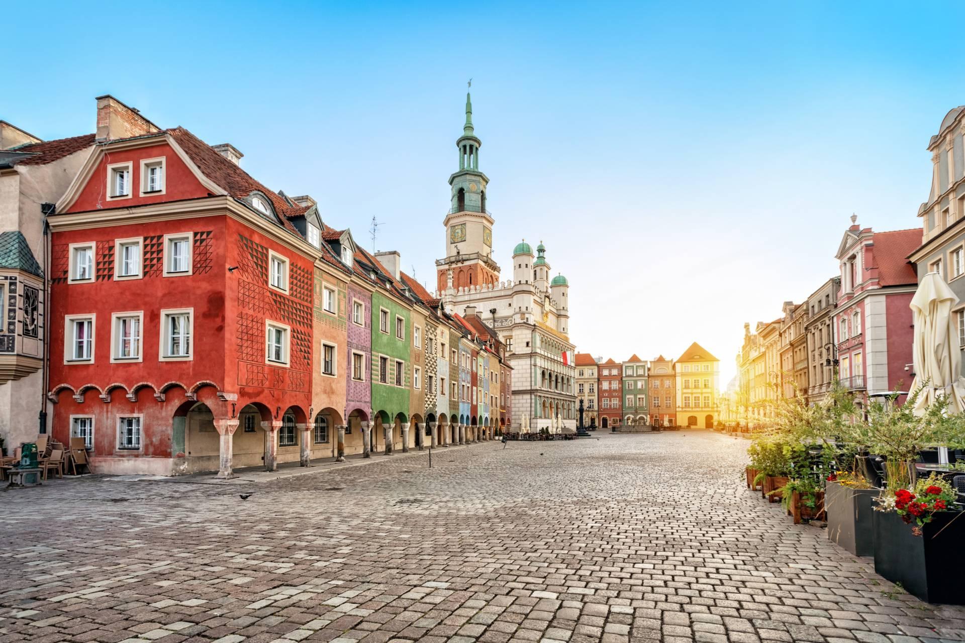 🎯 Pozycjonowanie stron internetowych Poznań | Agencja SEO | Grupa TENSE