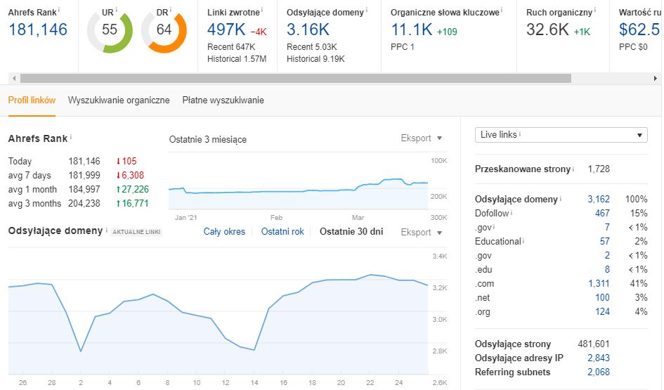 Analiza i optymalizacja profilu linkowego domeny