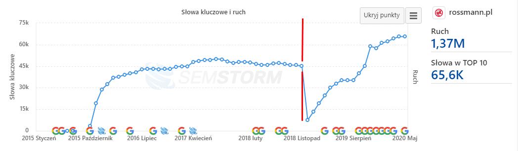 Nieudana migracji sklepu internetowego Rossmann