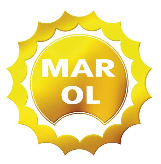 Marol – projekt strony internetowej