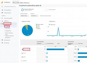 Drugi sposób sprawdzenia obecności ruchu generowanego przez boty w Google Analytics