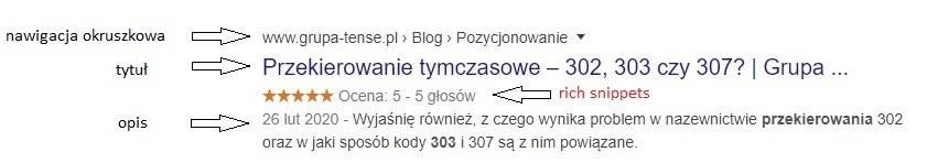 przykładowy wynik wyszukiwania